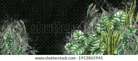 Tropical leaves on a dark photo wallpaper