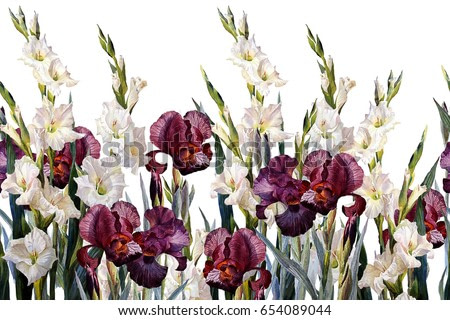 Floral horizontal seamless border.Irises and gladioluses,  on black background. Watercolor painting.