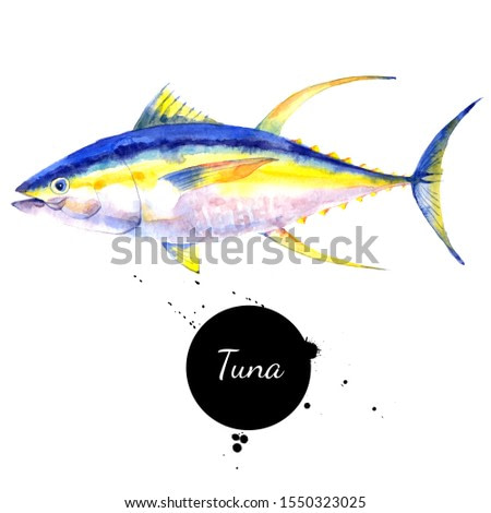 Watercolor yellowfin tuna fish illustration. Painted isolated seafood on white background