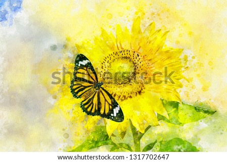 Art watercolor painting of Plain Tiger butterfly on blossom sunflower