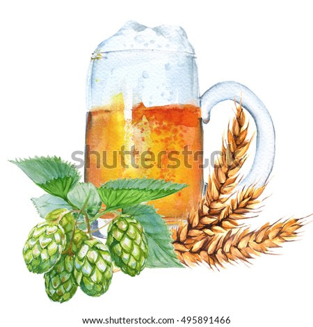 Mug with beer, hops and malt. Isolated on a white background. Watercolor illustration.