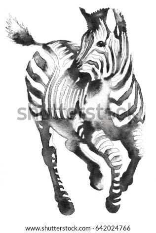 black and white monochrome painting with water and ink draw zebra illustration