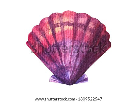 Seashell watercolor illustration. Hand drawn underwater element design. Artistic marine design element. Illustration for greeting cards, printing and other design projects.
