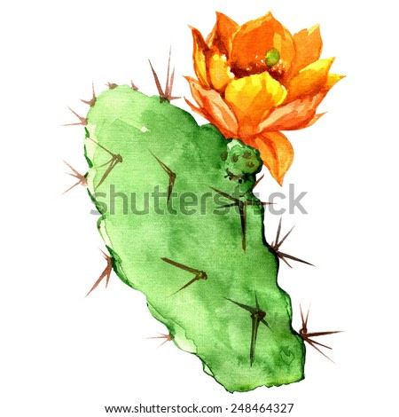 Opuntia cactus with yellow flower, watercolor painting