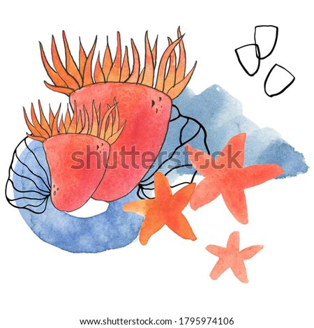 Under the sea is a collection of high-quality hand-drawn watercolor and line art illustrations of underwater world, abstract shapes and abstract lines