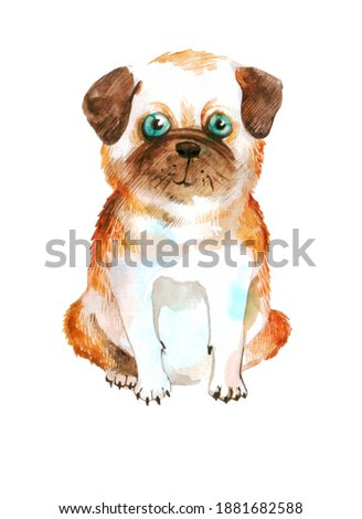 cute french bulldog on a neutral background. watercolor illustration or picture with a dog