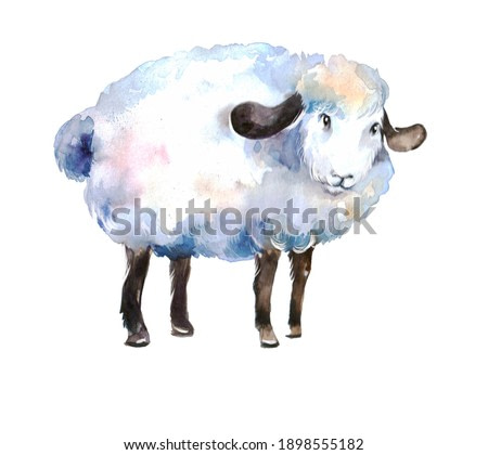 cute cartoon white lamb on a neutral background. watercolor animal illustration or pet print