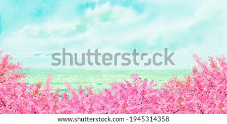 Watercolor landscape painting panorama colorful of cherry blossom tree, natural beauty with copy space sky cloud background in nature spring season. Painted impressionist, illustration image