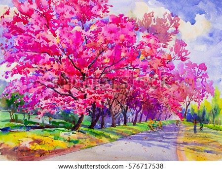 Painting watercolor landscape original pink red color of Wild himalayan cherry,and family,woman, boys  cycling exercise morning. Hand painted, blue sky cloud background,beauty nature winter season.