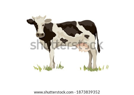 black and white cow. Vector illustration on the theme of dairy products and livestock, watercolor style.