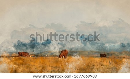 Digitally created watercolor painting of Beautiful Summer evening landscape image of cows grazing in English countryside