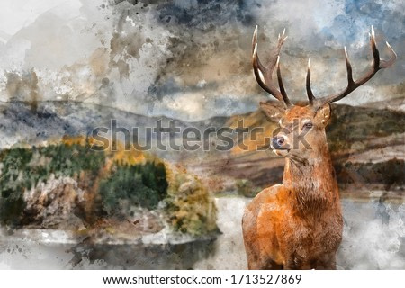 Digital watercolor painting of Epic Autumn Fall landscape of Hawes Water with red deer stag Cervus Elpahus in foreground