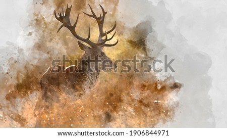 Digital watercolor painting of Beautiful image of red deer stag in colorful Autumn Fall landscape forest