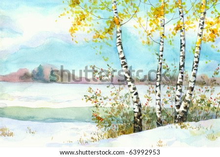 Watercolor landscape. Yellowing of birch and wild rose in the snow-covered field near the river