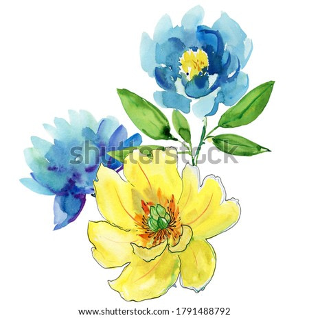 Blue and yellow flowers on white background. Watercolor illustration.