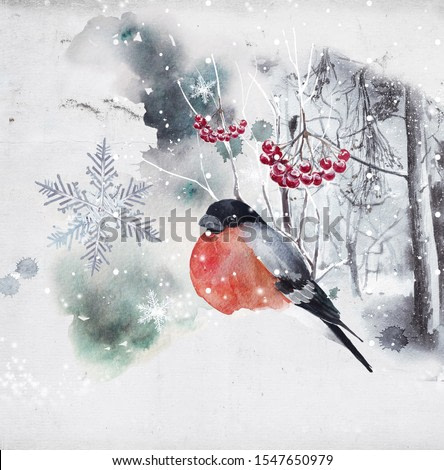 watercolor portraits of ravens and birds, winter landscapes and winter landscapes; finished projects, invitation postcard