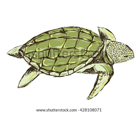 green turtle isolated on a white background. rough stylized. design for T-shirts. grunge style