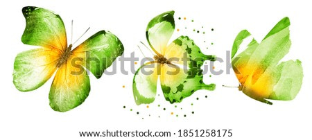 Three watercolor butterflies, isolated on white background
