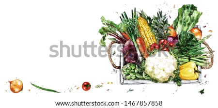 Wooden Tray with Vegetables. Watercolor Illustration