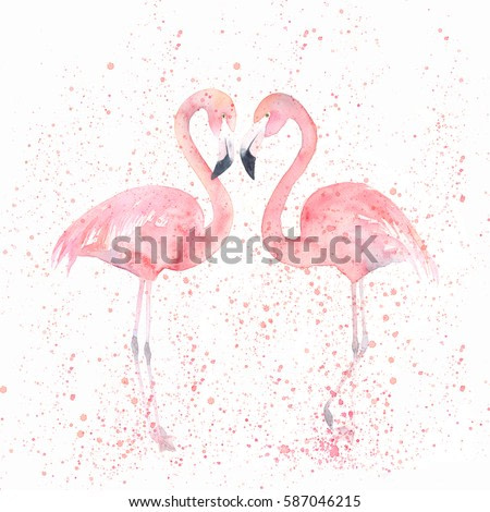 Watercolor flamingos with splash. Painting image