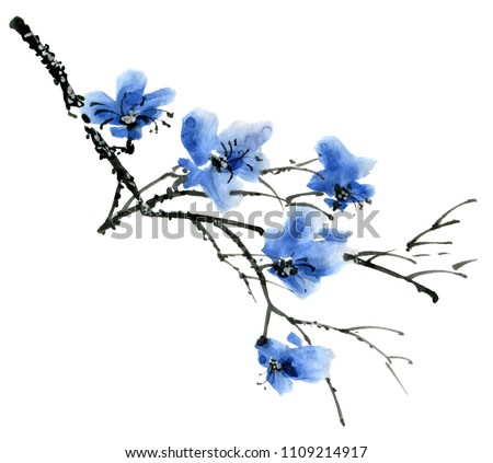 Watercolor and ink illustration of tree branch with blue flowers. Sumi-e, u-sin painting. Illustration on white background.