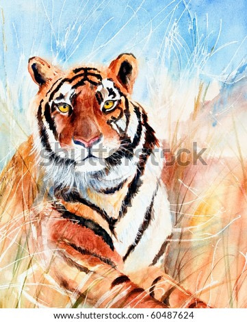 Watercolor painting of tiger in grass