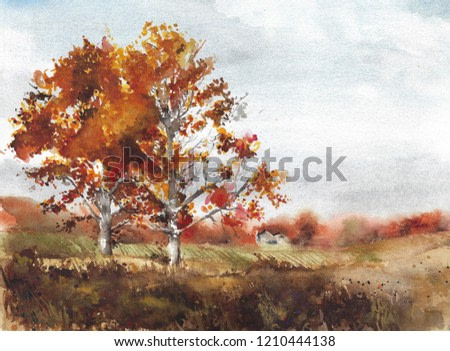 Autumn landscape yellow trees birch fall colors watercolor painting illustration