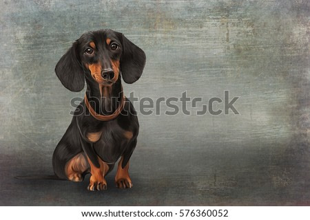 Drawing, raster illustration funny dog breed  dachshund, portrait oil painting on old vintage color grunge paper background. Hand drawn home pet. Digital painting.