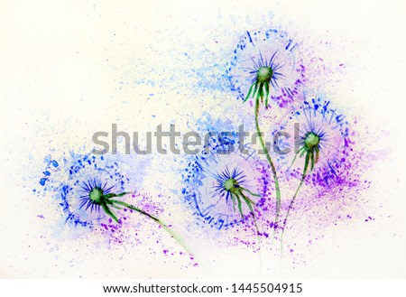 Dandelion flowers in the wind. Watercolor painting illustration