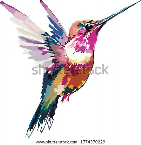 Image of an exotic birdie in color. vector