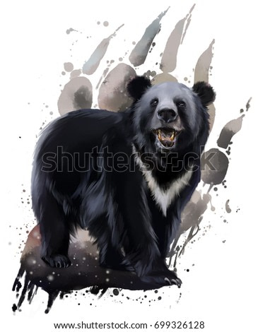 Black bear with white chest watercolor painting