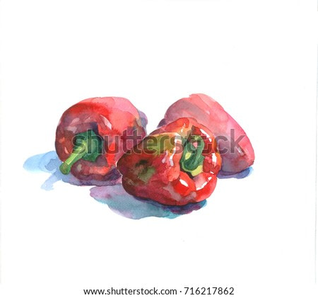 Watercolor illustration of red peppers isolated on white background. Still-life illustration. Watercolor painting.