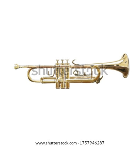 Trumpet watercolor drawing.  Musical instrument