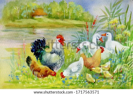 Watercolor Hen and chicks in yard illustration