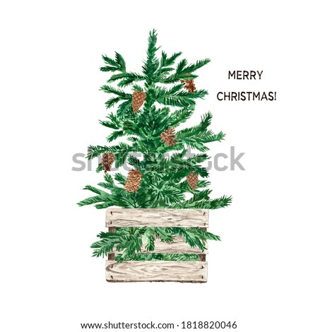 Watercolor Christmas tree illustration. Hand painted holiday fir tree in a wooden box with pine cones. New Year decor in Scandinavian rustic style. Card design.