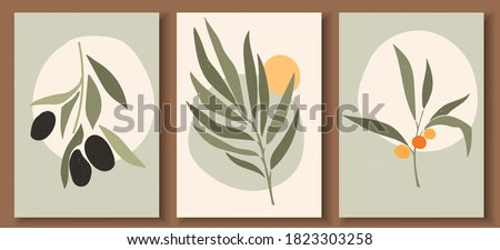 Collection of contemporary art posters in pastel colors. Abstract  geometric elements and strokes, leaves and berries, olive, tangerine. Great design for social media, postcards, print.
