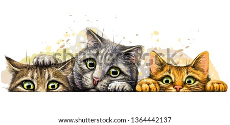 Cats. Wall sticker. Graphic, colored hand-drawn sketch with splashes of watercolor depicting three cute cats on a horizontal surface.