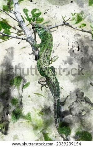 Green lizard lurking on a tree branch. A reptile hunting in the woods. Animal life in its natural habitat. Digital watercolor painting