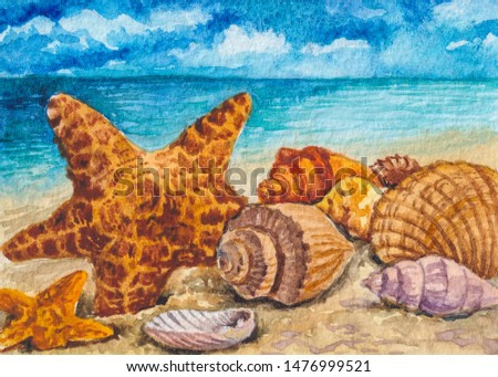 A lot of seashells, starfish. Blue ocean with clear water. Summertime, vacations, souvenirs.
