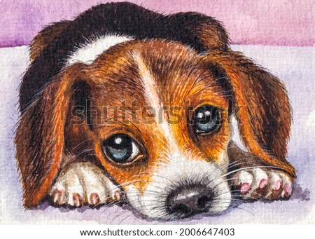 Puppy. Cute dog face. Home pet. Watercolor painting. Acrylic drawing art. A piece of art.