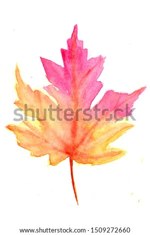 Maple leave pink brown watercolour painting