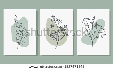 Set of trendy posters with plants. Abstract illustration. Modern Art. Minimalism. Vector illustration.