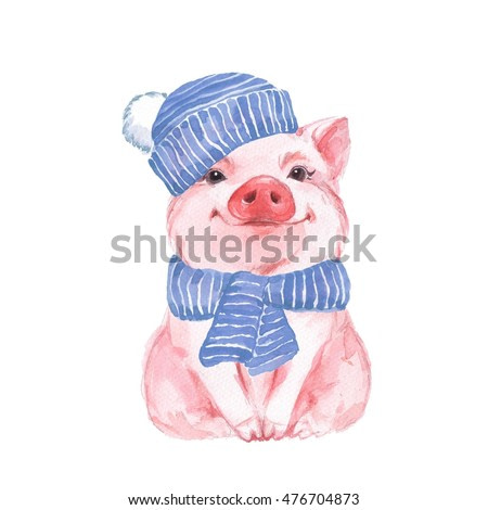 Funny pig in a blue hat and scarf. Cute watercolor illustration