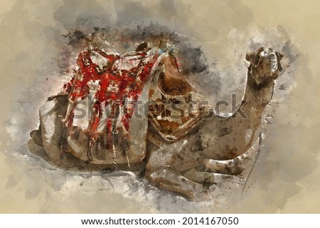 Digital watercolor painting of beautiful landscape image view of camel resting on the sand in Egypt