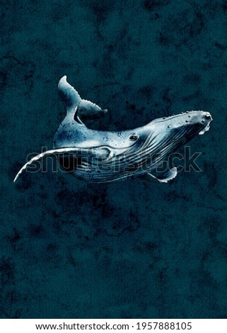 Whale Painting Watercolor, Whale Print, Nursery Art