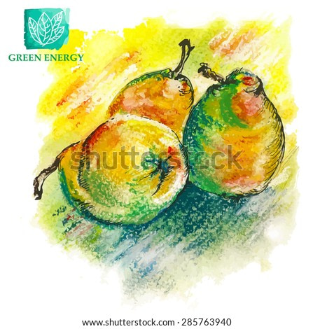 Pear. Watercolor handmade.  illustration for printing, banner, website. Black and white ink drawing