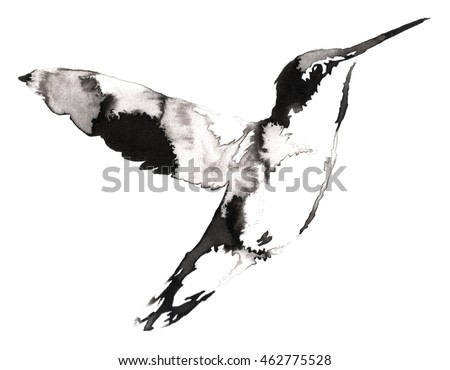 black and white monochrome painting with water and ink draw hummingbird illustration