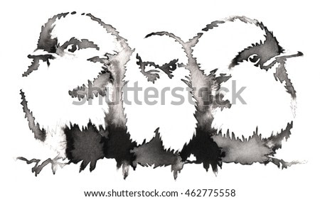 black and white monochrome painting with water and ink draw Sparrow bird illustration