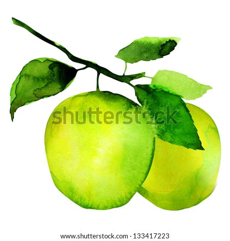 group of apples, watercolor painting on white background