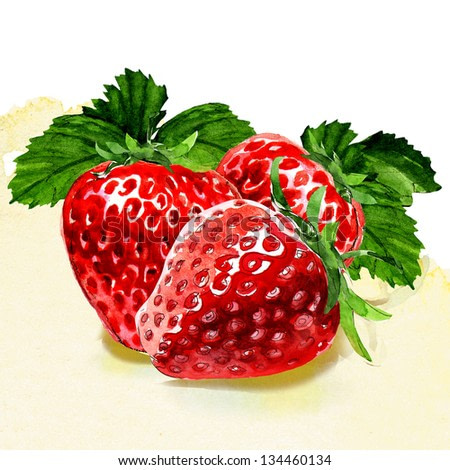 group of strawberries. watercolor painting on white background